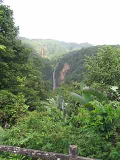 chutes du carbet foret humide �cosysteme tropical antilles