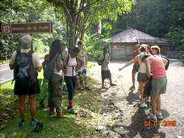 maison de la forêt , Route des mamelles, Guadeloupe