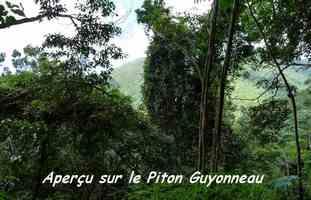 aperçu, tarace contrebandiers, basse terre nord, Guadeloupe