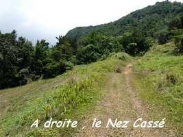 Arrivée de la trace du Nez Cassé, Papaye