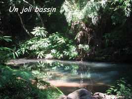 bassin, rivière, bras de fort, goyave, guadeloupe