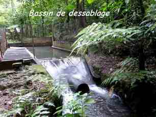 bassin dessablage, nez cassé, rivière noire, guadeloupe