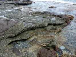 beach rocks, trace grand nord , desirade , guadeloupe