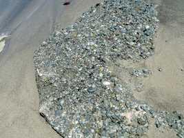 beach rocks, trace grand nord , desirade , guadeloupe