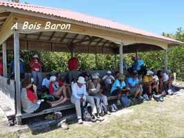 bois baron, TGT4, grande terre, guadeloupe