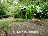 bout chemein, madeleine, basse terre sud, guadeloupe
