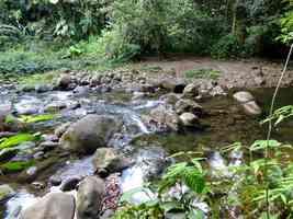 rivière bras david, route mamelles, guadeloupe