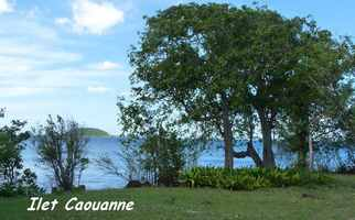 caouanne, ilet, pointe allègre, basse terre, guadeloupe
