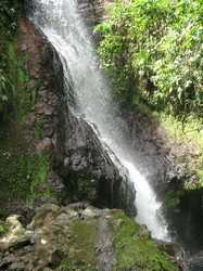 cascade bras de fort, goyave, basse terre nord, guadeloupe