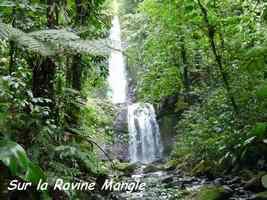 cascade mangle, chutes moreau, goyave, basse terre nord, guadeloupe