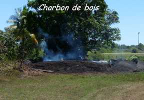 charbon, TGT, grande terre, guadeloupe
