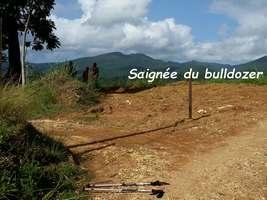chemin bulldozer , Bis conodor, Ste Rose, Guadeloupe