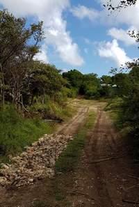 chemin, mahaudière, anse bertrand, grande terre, guadeloupe