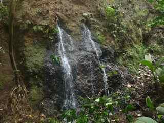 balade, cascade de le fontaine, littoral, capesterre belle eau, guadeloupe