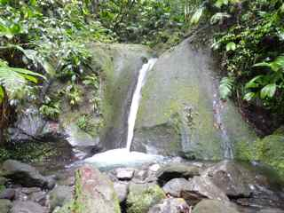 balade grosse corde cascade droite foret humide guadeloupe