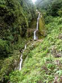 balade armistice, basse terre, cascade galion, foret humide, guadeloupe