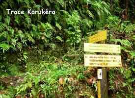 départ sentier karukera, chutes carbet, basse terre sud, guadeloupe