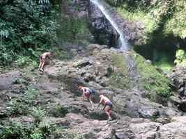 escalade, cascade, bras de fort, goyave, guadeloupe