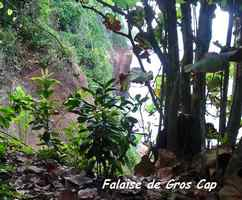 falaise, gros cap, sentier, tillet, basse terre, guadeloupe