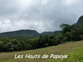 Vue vers le Grand Sans Toucher, Papaye