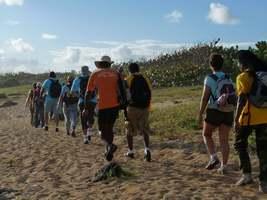 marche plage, TGT5, grande terre, guadeloupe