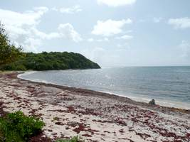 plage anse patate, gosier, grande terre, Guadeloupe