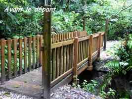 pont départ, chutes moreau, goyave, basse terre nord, gaudeloupe