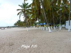 balade, d�sirade, plage, ile guadeloupe, antilles