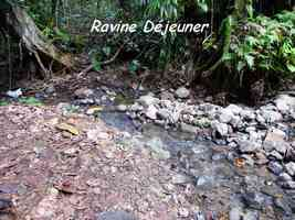 ravine déjeuner, trace contrebandiers, basse terre nord, guadeloupe