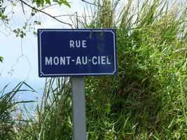 Rue Papaye