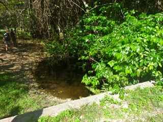 rivière audoin, moule, grande terre guadeloupe