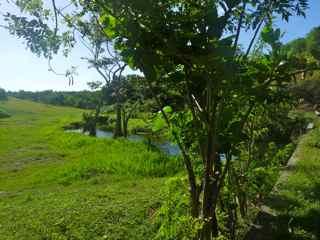 balade rivière audoin ravine moule grande terre guadeloupe