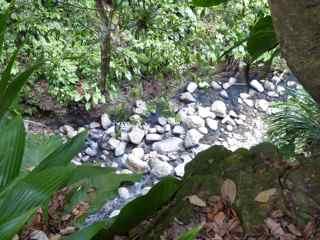balade matouba saut d`eau foret humide guadeloupe