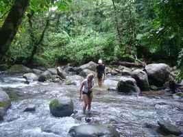 traversée rivière, chutes moreau, goyave, basse terre nord, guadeloupe