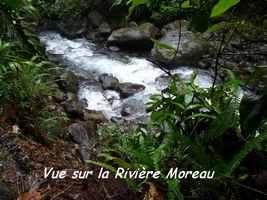 vue rivière, chutes moreau, goyave, basse terre nord, guadeloupe