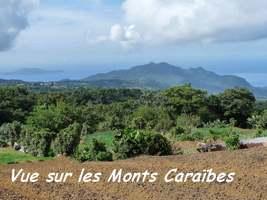 Vue Monts Carabes et les saintes, Papaye